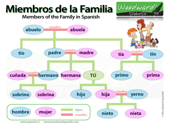 Family members in spanish la familia woodward spanish - Mi tarjeta family ...