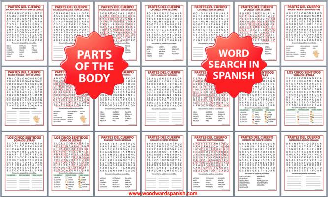 Spanish Parts of the Body Word Search Bundle - Partes del cuerpo humano - Sopa de letras