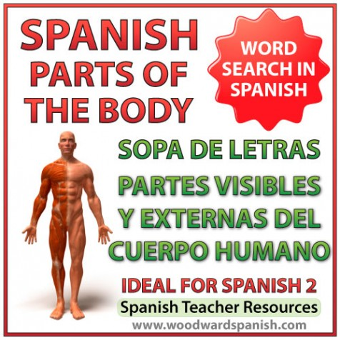 Word Search - External parts of the body in Spanish. Sopa de letras - Partes externas y visibles del cuerpo humano