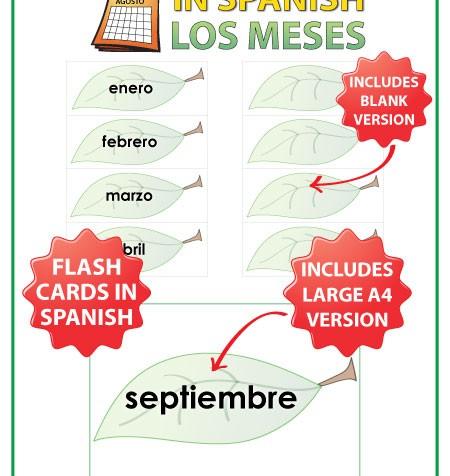 Spanish Flash Cards with the months of the year. Tarjetas con los meses del año en español