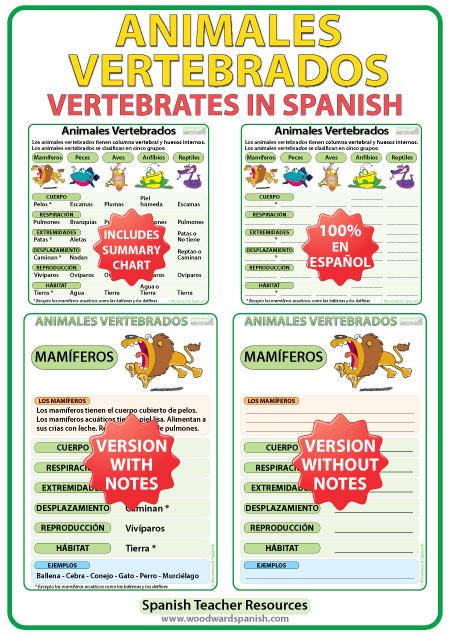Características de los animales vertebrados en español. Charts about Vertebrates in Spanish.