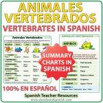 Summary charts about Vertebrates in Spanish. Afiches con las características de los animales vertebrados en español.