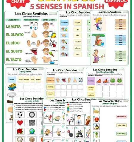 5 senses in Spanish - Worksheets and Chart. Los cinco sentidos en español.