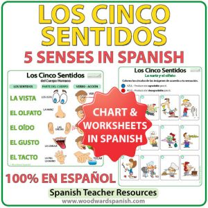 Los cinco sentidos en español. The five senses in Spanish - Worksheets and Chart.