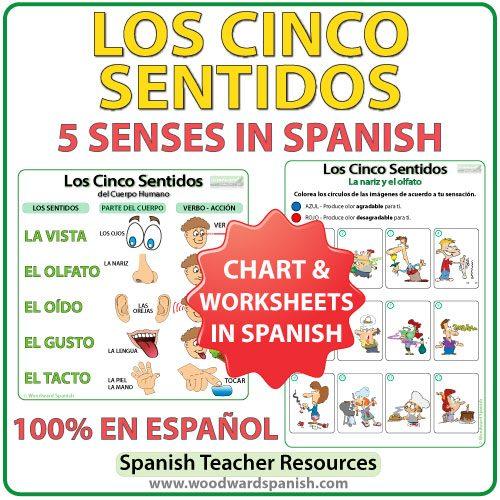Los cinco sentidos en español. The five senses in Spanish - Worksheets and Chart.